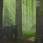 Cy Baker - Black Bear